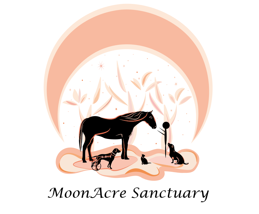 MoonAcre Sanctuary